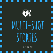 Multi Shot Stories
