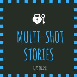 Multi Shot Stories